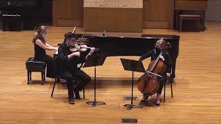 Felix Mendelssohn - Piano Trio No. 1 in D minor, Op. 49, II, Andante con moto tranquillo