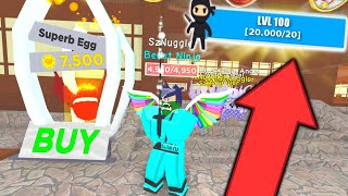 ⭐ HOW TO HAVE A SECRET * 100LVL * OUTFIT AND PETS!   ROBLOX ⭐