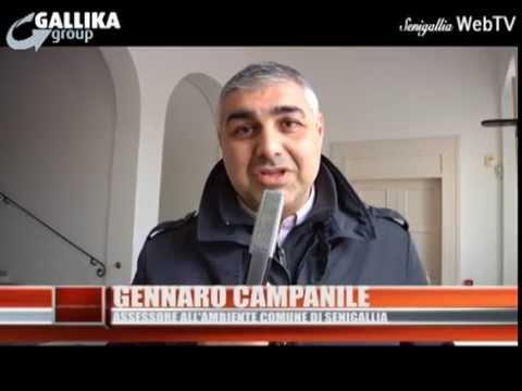 Notizie Senigallia WebTv del 25-02-15