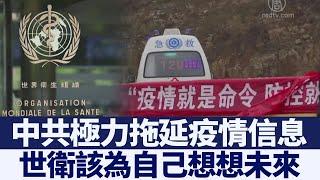 世衛文件顯示中共極力拖延疫情信息|新唐人亞太電視|20200604