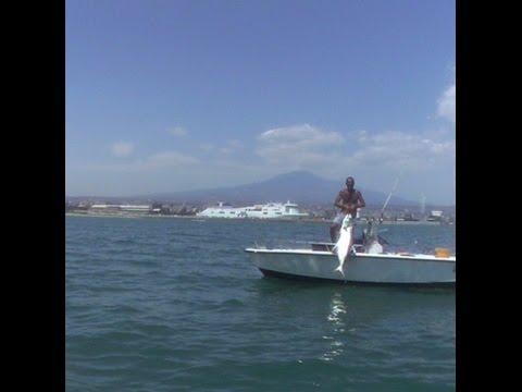 Due Grosse Leccie Amie - Pesca a traina con il vivo