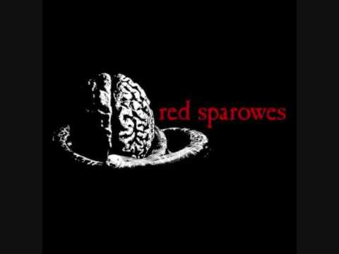 Red Sparowes - The great leap forward