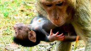 Look Like New Baby Say Help Me Mom!, Long Legs & Hands Of Duchese Make New Baby Hard To Hug Her