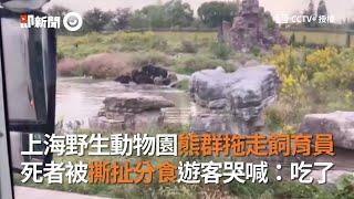 上海野生動物園飼育員遭熊群拖走!被撕扯分食「吃了」|中國大陸|意外|猛獸|2020