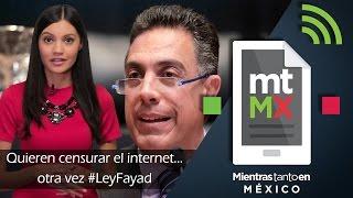 Quieren censurar el internet... otra vez #LeyFayad - Mientras Tanto en México