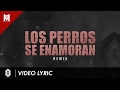 Download Los Perros Se Enamoran [Remix] [LIRYC + AUDIO ] - Andy Rivera Ft Nicky Jam y Varios Artistas MP3 song and Music Video