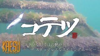琵琶湖をターゲットとするブラックバスルアーメーカー、KAESU(カエス)...