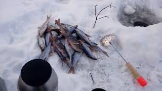 Главный Секрет Зимней Рыбалки