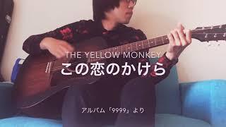【弾き語り】この恋のかけら / THE YELLOW MONKEY【1コーラスのみ】