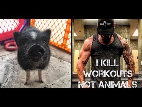 Starting a Farm Sanctuary and Vegan Bodybuilding with Conscious Muscle