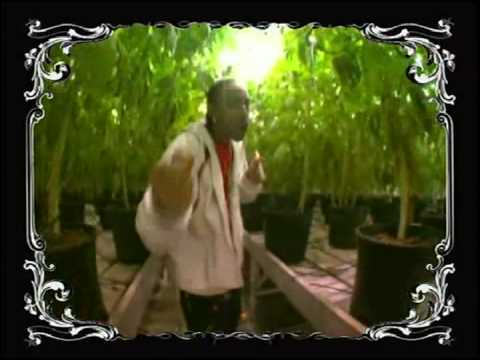 LUDACRIS - BLUEBERRY HAY **YUM YUM BLEND** FT CRUCIAL CONFLICT