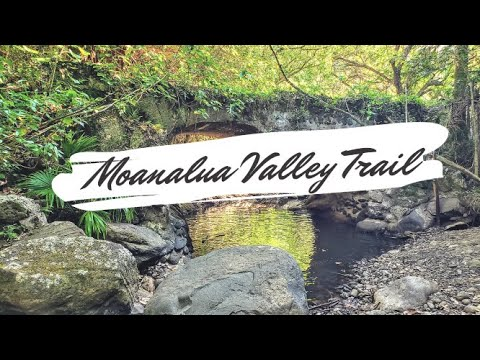 Moanalua Valley Trail in Oahu, Hawaii
