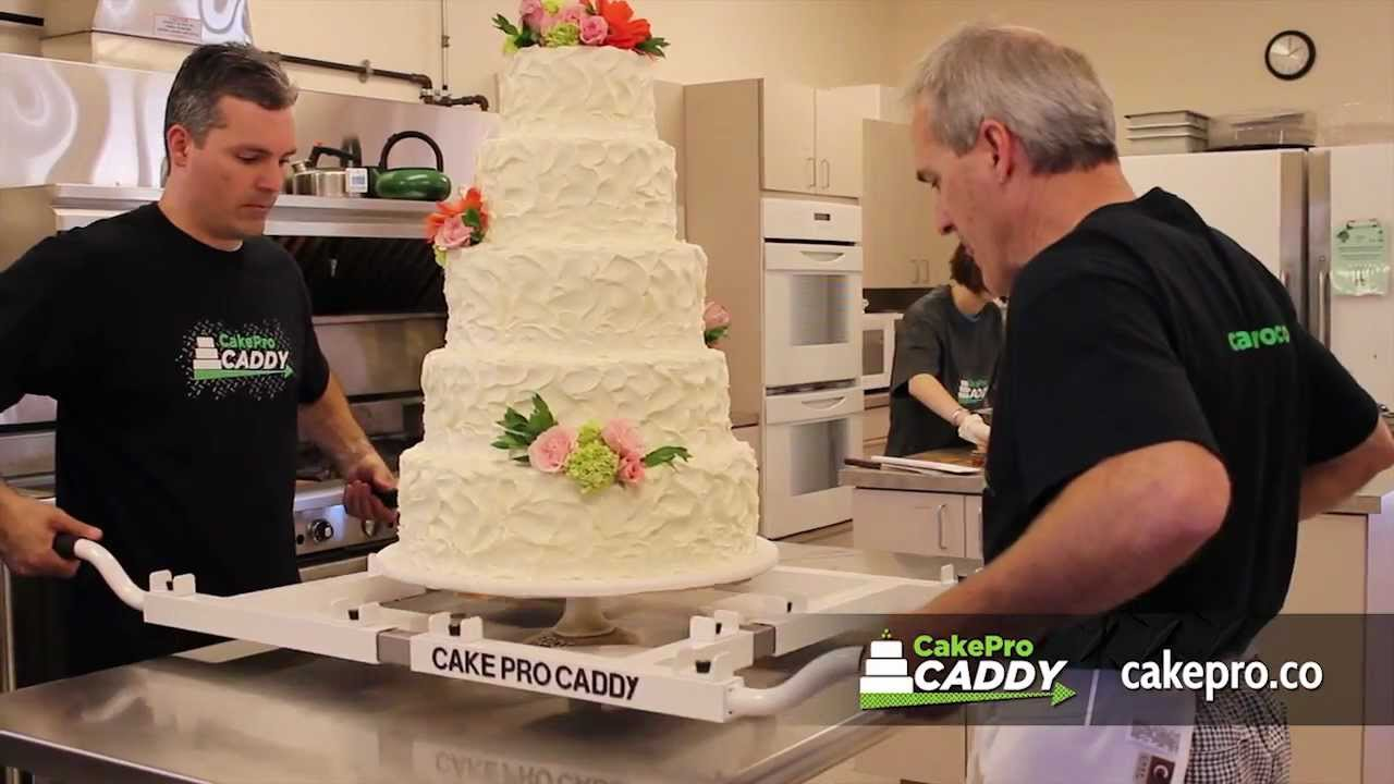 wedding cake boxes for transporting cakepro caddy professional cake carrier 22067