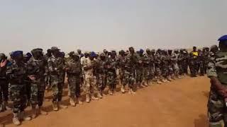 Sodja de Niger