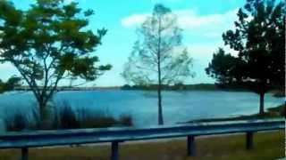 № 2260 США Кладбище в Орландо Флорида Дорога вдоль озера