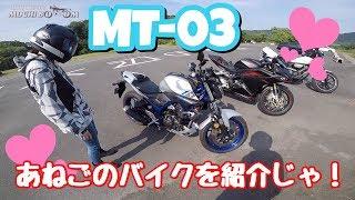 【モトブログ】新車と何が違うの!? 女性ライダーあねごのバイク紹介!! / MT-03 CBR250rr BOLT
