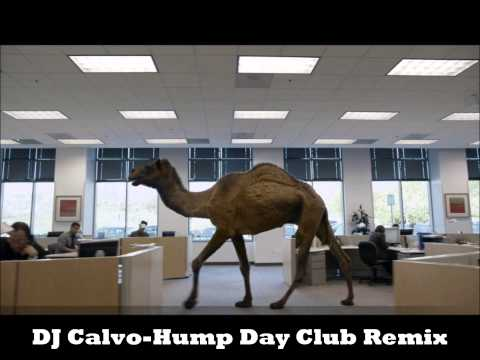 Baltimore Club Music- Geico- Hump Day Remix (DJ Calvo)
