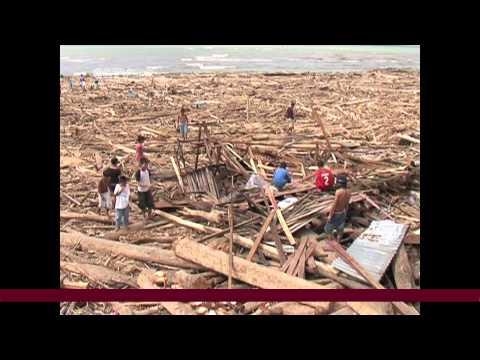 Typhoon Bopha hit Philippines, causing devastating impact on the banana industry