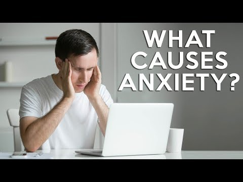 """Why do I have Anxiety, but """"Normal"""" Test Results? Science-Based Solutions with Dr. K, Functional"""