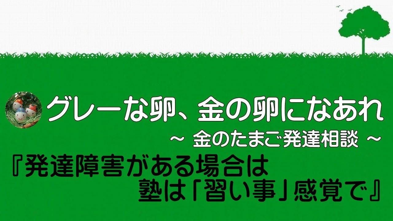 【教育相談 ADD】 ~発達障害がある場合は塾は「習い事」感覚で~ 0263 - YouTube