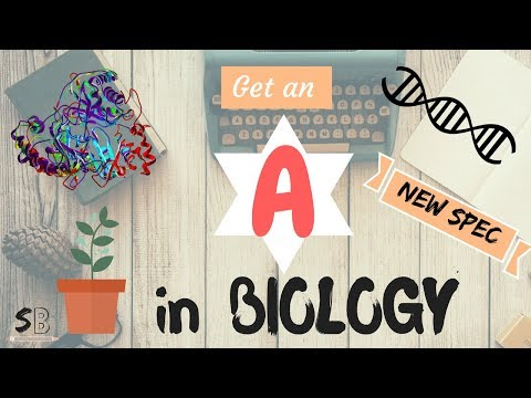 HOW TO GET AN A GRADE IN A-LEVEL BIOLOGY | How i Revised, 7 Tips, New Spec