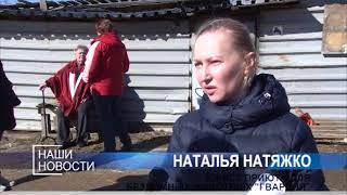 """Снос Пушкинского приюта для животных """"Гвардия"""" отложен до 4 мая."""