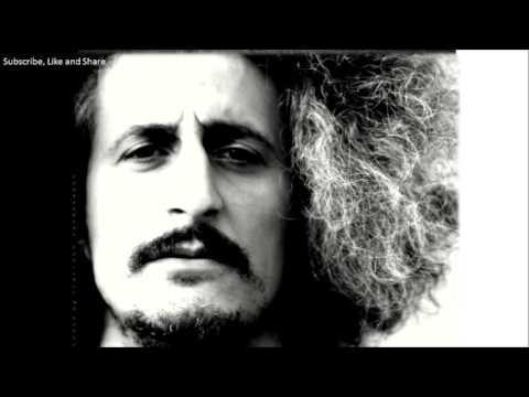 Mohsen Namjoo - Zolf Bar Bad Lyrics Audio متن آهنگ زلف برباد - محسن نامجو