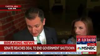 Ted Cruz Frustrates Whiny MSNBC Reporter After GOP and Trump WIN Shutdown Deal