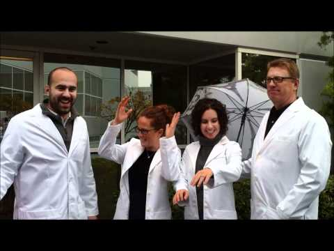 Medelita Lab Coats in the Rain