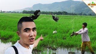 Bắt Chim Bằng Lưới Bắt Chim Cò Gà Nước chim Chích Duy Jungle