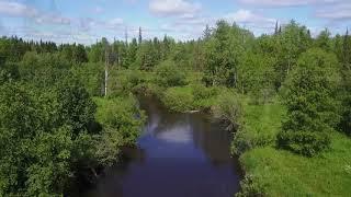 Деревня Канава, Северо-Екатерининский канал, речка Северная Кельтма.Дикая природа этих мест.