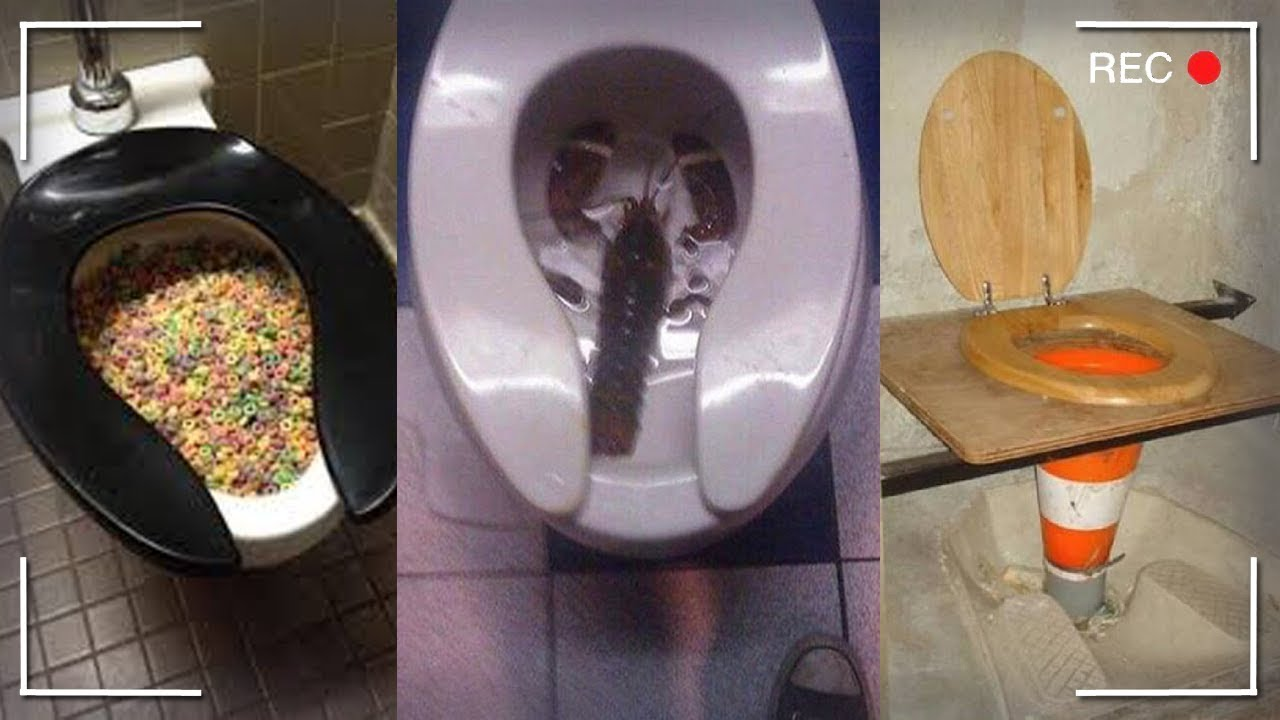 Weird Images Of Toilets 1