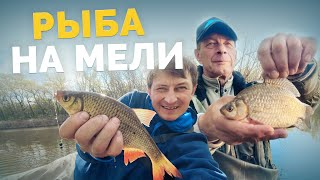 КРАСНОПЕРКИ НА ХЛЕБ В поисках карася Рыбалка в Киеве Ловля на поплавок Рыбалка 2021