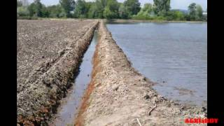 irrigating ,   the rice fields in   PORTUGAL   (HD video)