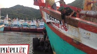 PLO - Xử phạt tàu cá sửa số hiệu đi đánh bắt tại Indonesia