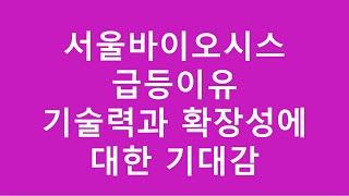 [주식투자]서울바이오시스 급등이유/기술력과 확장성에 대…