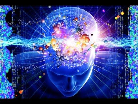 Resultado de imagen de cerebro y mente