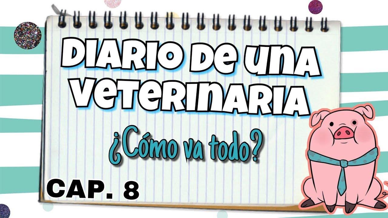 SEMANA 8 A ¿? | DIARIO DE UNA VETERINARIA