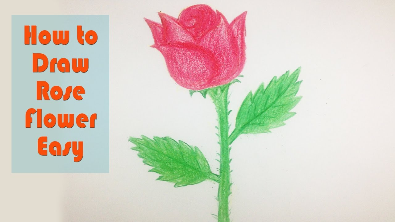 How to draw rose flower easy drawing beautiful flower easily youtube how to draw rose flower easy drawing beautiful flower easily izmirmasajfo