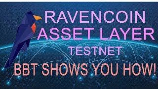 Ravencoin Asset System - Public, Permissionless, Asset Creation