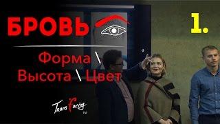 высота - форма и цвет Брови - Физиогномика - Леонид Золин -  Трансфейсинг - 2016