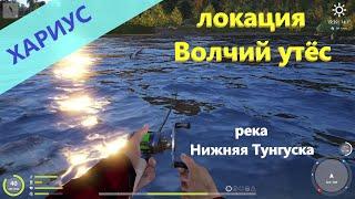 Русская рыбалка 4 река Нижняя Тунгуска Хариус в устье речушки