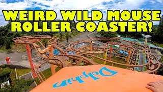 Weird Wild Mouse Roller Coaster! Front Seat Onride POV Misaki Park Japan