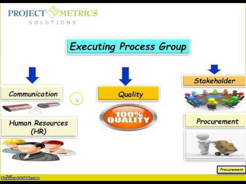 PMP Executing Process Group