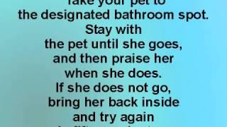 Best Dog Traiin | Potty Training
