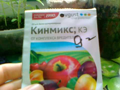 Кинмикс- препарат от вредителей нашего сада. Один из лучших.