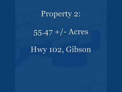 Georgia Real Estate Auctions and Georgia Land Auctions