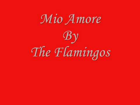Mio Amore By The Flamingos