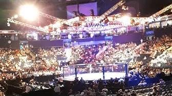UFC Hamburg Live