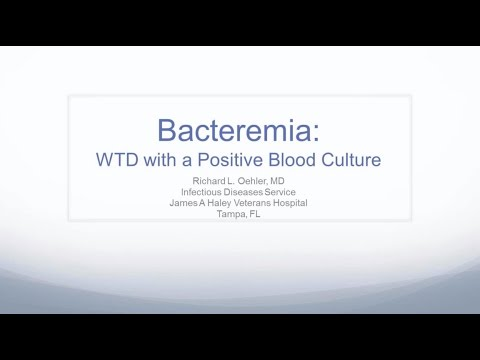 What To Do With A Positive Blood Culture -- Richard L Oehler, MD